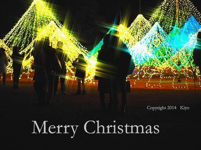 Merry Christmas 2014_補正済.jpg